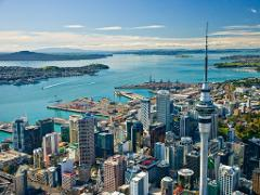 Auckland's Best and North Shore Half Day Tour