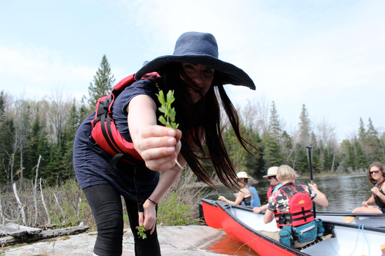 Wild Foodies Pick Paddle and Party Full Day