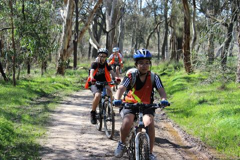 Nature Cycle through the Wine Regions - McLaren Vale