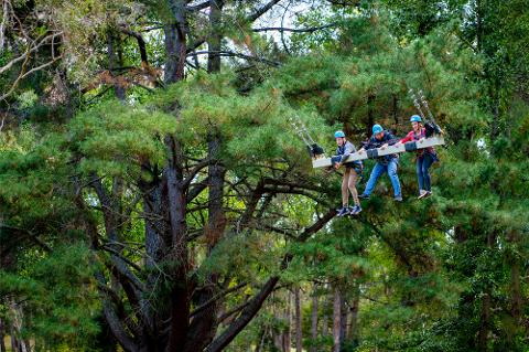 Rock Climbing, Zipline and Mega Swing Experience - Mount Lofty Adventure Hub