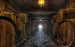Visit the winery with transfers - Shared-