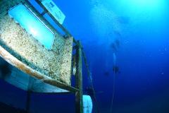 Underwater Tasting