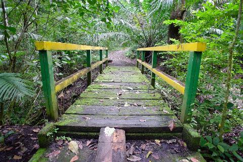 Gatun and Parque Nacional Soberania Trekking