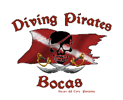 Fun Diving with Diving Pirates Bocas