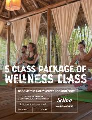 5 days wellness package