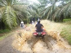 ATV Fourtrax Offroad Adventure