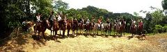 Brisas del Nara HorseBack Riding Tour (Half Day)