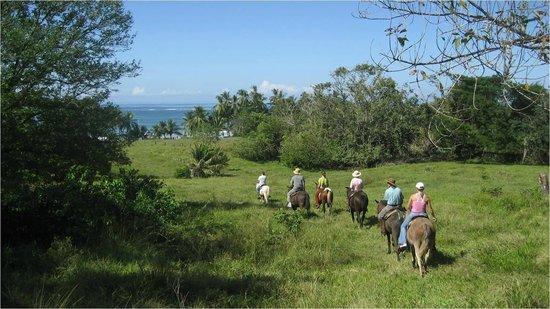 Horseback riding Hacienda Ario