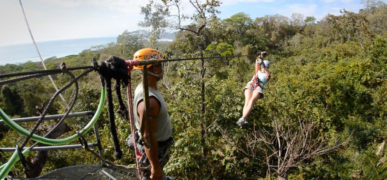 PreviousNext & Canopy Mal Pais - Selina Santa Teresa Reservations