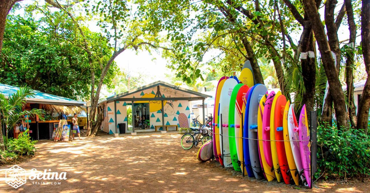 High Performance Surfboard rentals