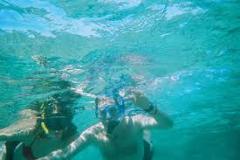 Snorkeling at Catalina Islands