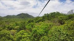 Monkey jungle canopy + tarzan swing