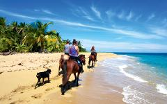 Beach & Jungle Horse Back ride