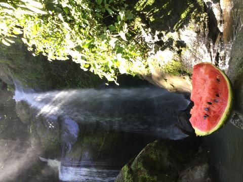 Volio Waterfall Hike
