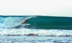 Surf & Jungle 10 Night Package
