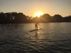 Stand Up Paddle (SUP) rental