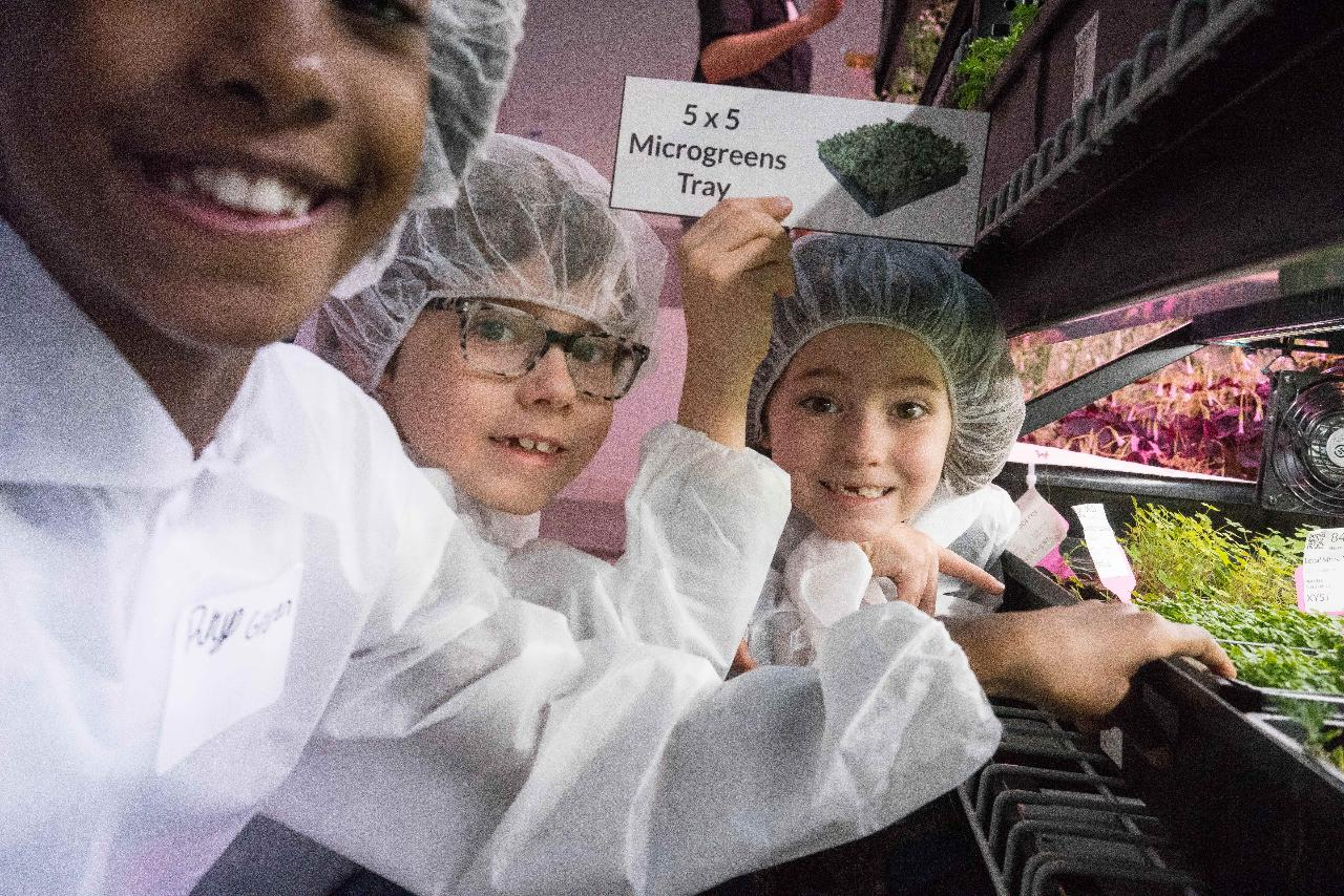 Hydroponics for Kids: Food, Farming, and Fun!