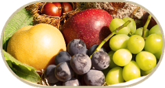 "【Hirata Kankou-nouen】""Choudo-gari"" - picking fruits of the season /ちょうど狩り"