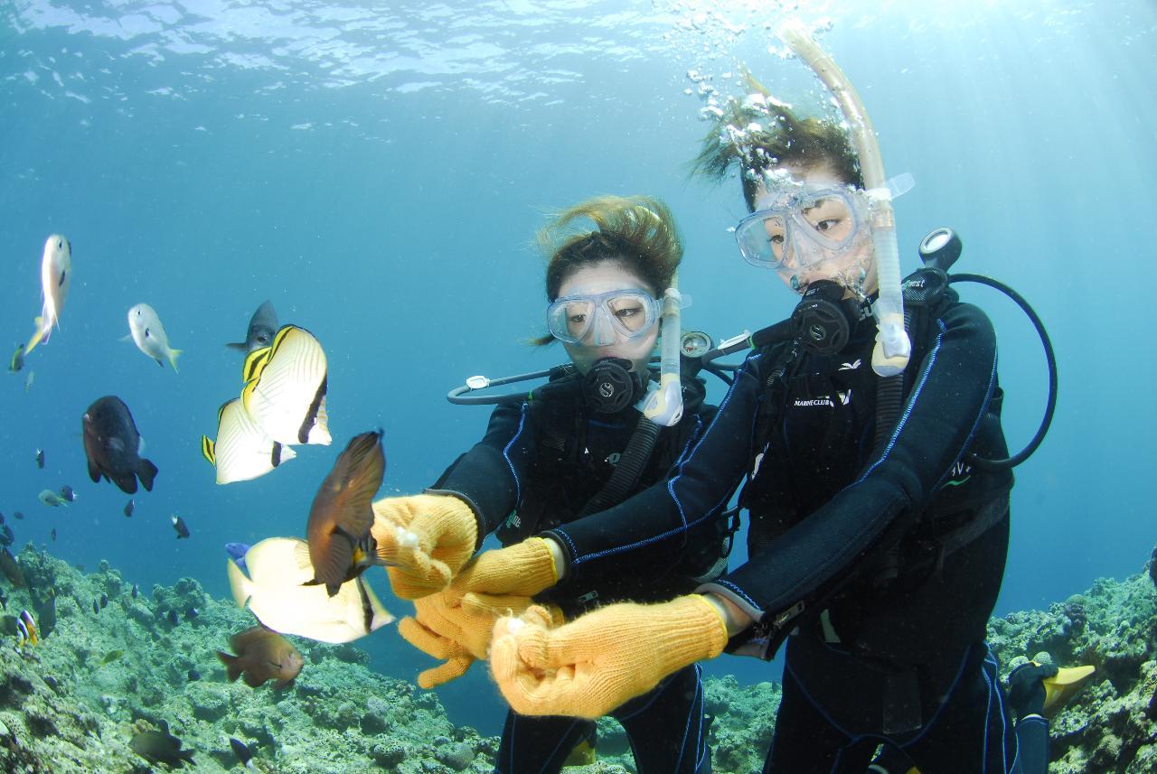 【マリンクラブナギ】Marine Club Nagi / 青の洞窟体験ダイビング