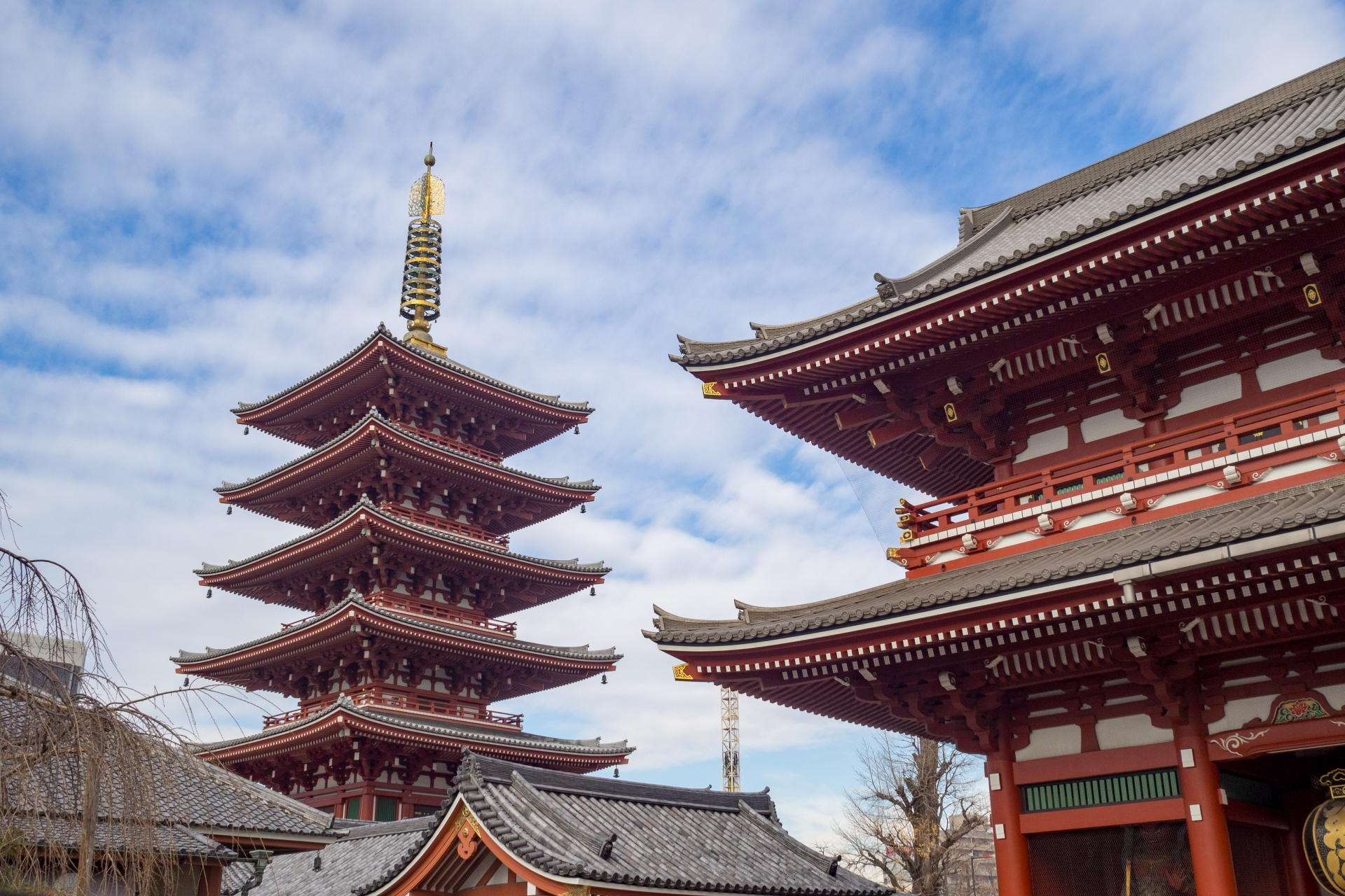 Tokyo Asakusa Half Day Walking Tour with Local Guide