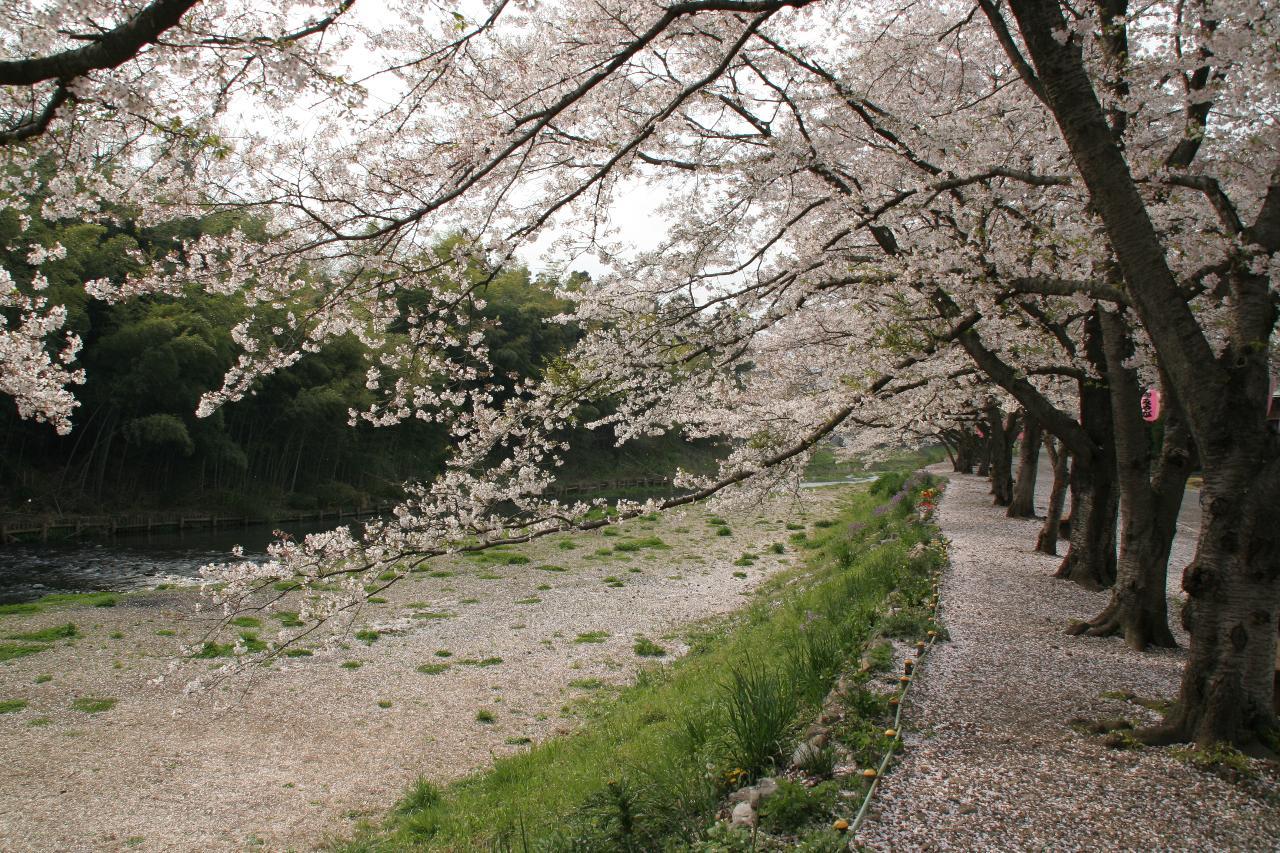 【日の出町観光協会】(Hinodemachi Tourism Association) / 日の出町サイクリングツアー
