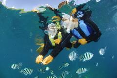 【マリンクラブナギ】Marine Club Nagi / 青の洞窟シュノーケリング