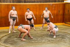 【Tokitsukaze Beya】Tokyo Sumo Morning Practice Watching at the Sumo Stable  / 相撲部屋稽古見学ツアー
