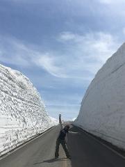 Walk Through the Snow Corridor of Miyagi