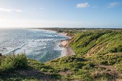 Phillip Island Odyssey: Hike and Aussie Wildlife