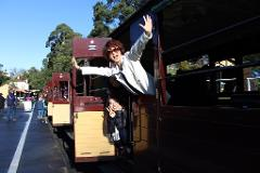 Puffing Billy & Phillip Island Private Day Tour