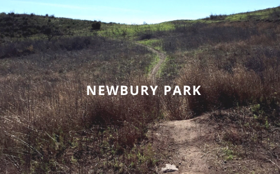 DOS VIENTOS TOUR (Newbury Park) Electric MTB - Freeride  90 min - (Beginner)