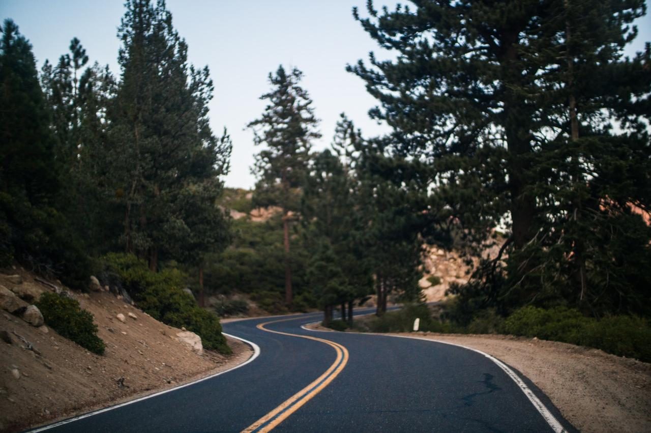 Angeles Forest Tour