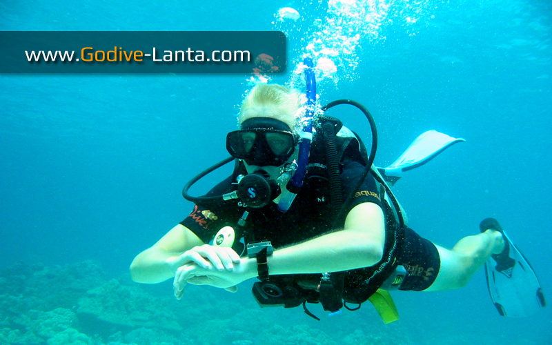 [ Online ] PADI Underwater Navigator Diver Course 2 Dives