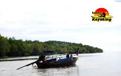 Sightseeing Trip (Half Day) : Mangrove by Kayak or Longtail Boat + Green Farm