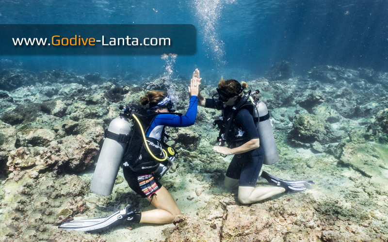 [ Online ] SSI Open Water Diver Course Lite