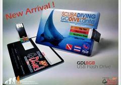 Go Dive 8GB USB Flash Drive