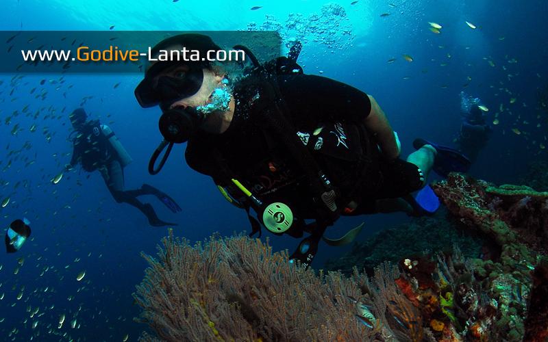 [ Online ] SSI Deep Diving Course 4 Dives