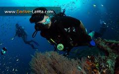 SSI Deep Diving Course 4 Dives