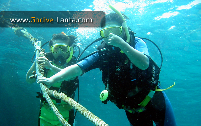 [ Online ] PADI Open Water Diver Referral Course 4 Dives