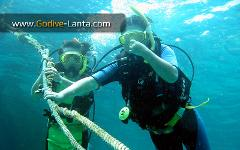 PADI Open Water Diver Referral Course 4 Dives