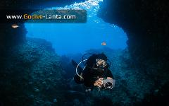 SSI Digital Underwater Photography Course 2 Dives