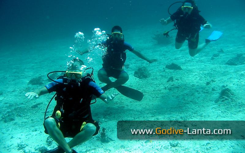[ Online ] SSI Pefect Buoyancy Course 2 Dives