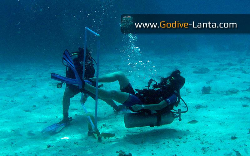 [ Online ] PADI Peak Performance Buoyancy Course 2 Dives