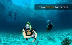 PADI Open Water to Divemaster