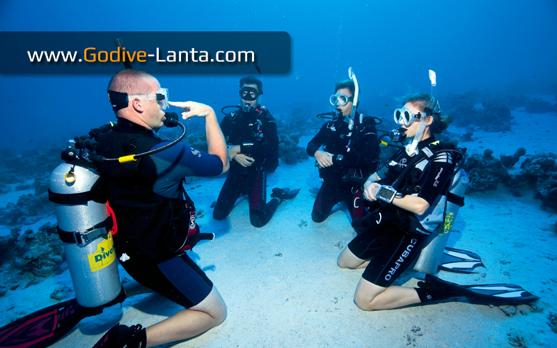[ Online ] SSI Dive Instructor Ultimate Package