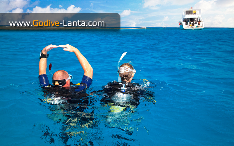 [ Online ] SSI Divemaster Course (DM)