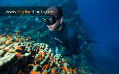 SSI Freediving Level 3 Course