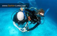 SSI Navigation Course 2 Dives