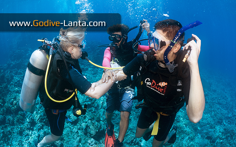 [ Online ] SSI Open Water Diver Referral Course 2 Dives