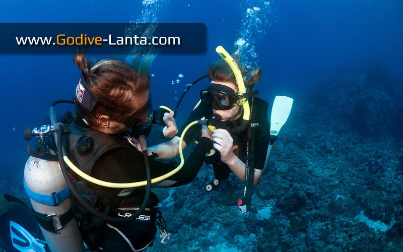 [ Online ] SSI Open Water Diver Referral Course 4 Dives
